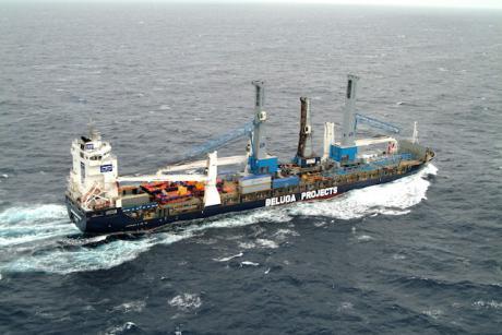 beluga_recognition_gottwald_craneswikimedia