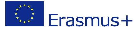 eu-flag-erasmus_vect_pos-e1498045550334