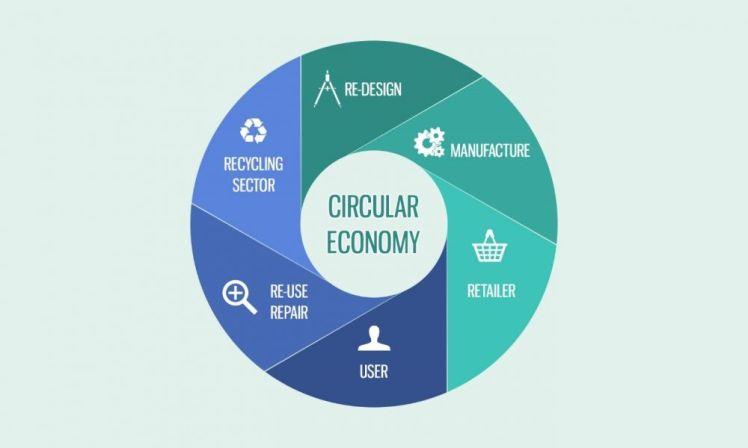 circular_1000_600_80